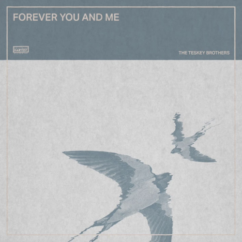 Forever You and Me - Single