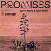Cover for Promises - Single