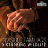 Cover for Disturbing Wildlife