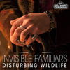 Cover for Disturbing Wildlife (Instrumental)